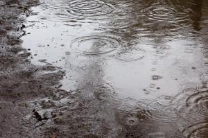 【恋愛心理テスト】 雨の日、水を・・・。
