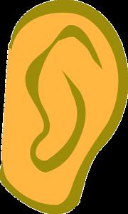 ear-305303_640