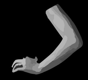 arm-312020_640
